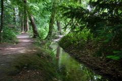 Beekjes bij Oosterbeek op 1,5 km